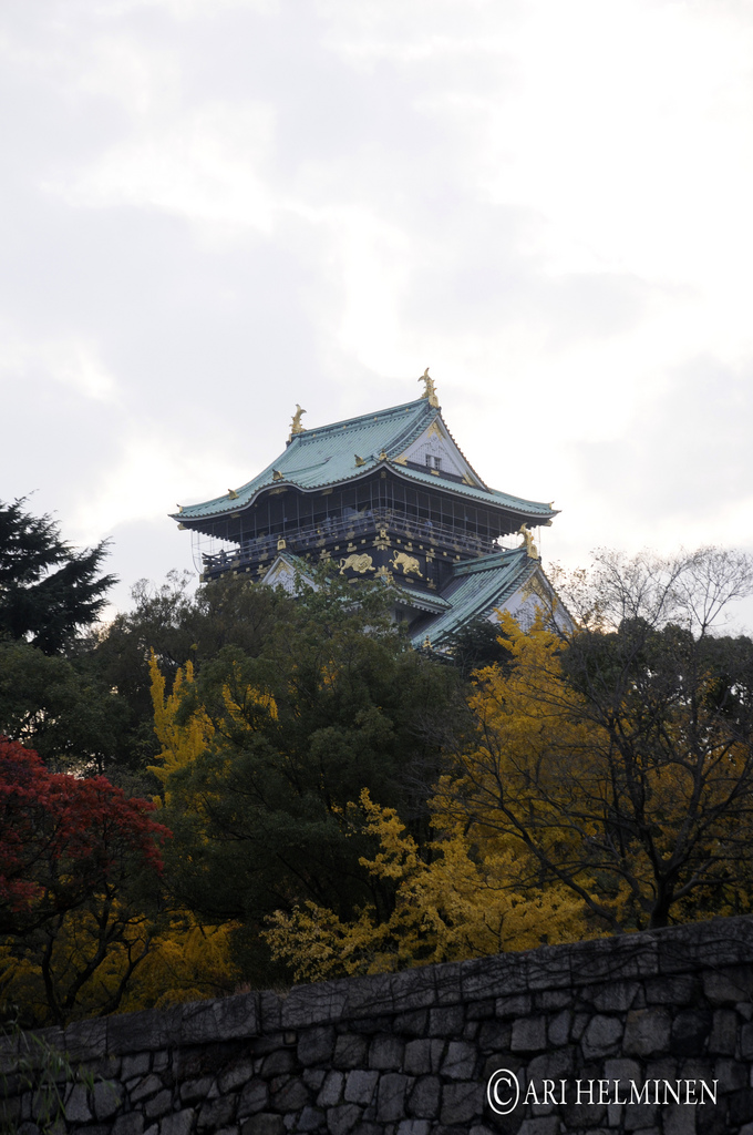 今日から大阪入りです!関西の皆さん、拡散お願いします! #5fingers