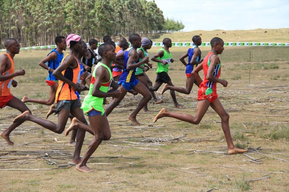 今週はケニアウィーク&飯能ベアフットマラソン!
